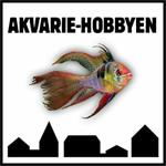 Akvarie Hobbyen