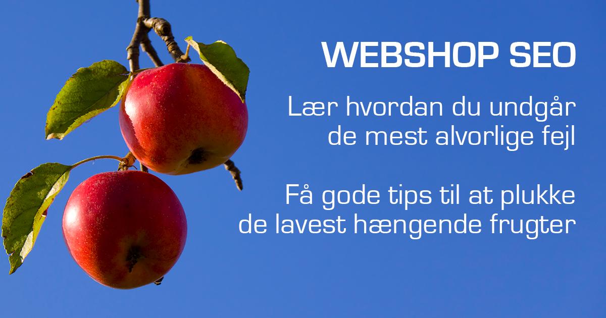 90da140ba01 De største Webshop SEO fejl - Mikkel deMib Svendsen - Iværksætter ...